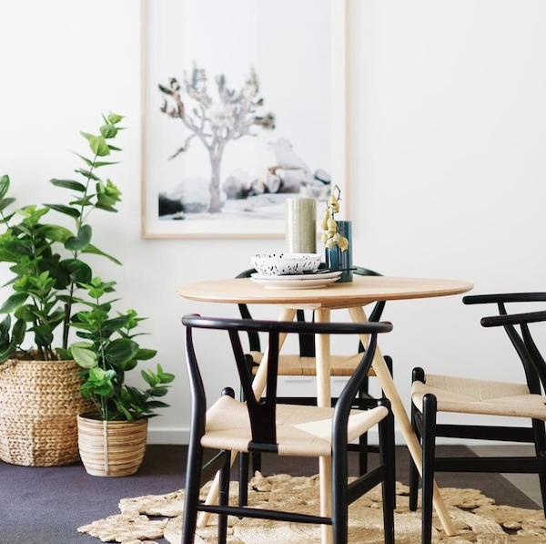 Best-tips-to-decorate-with-plants-4