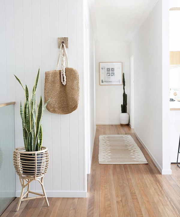 Best-tips-to-decorate-with-plants-5