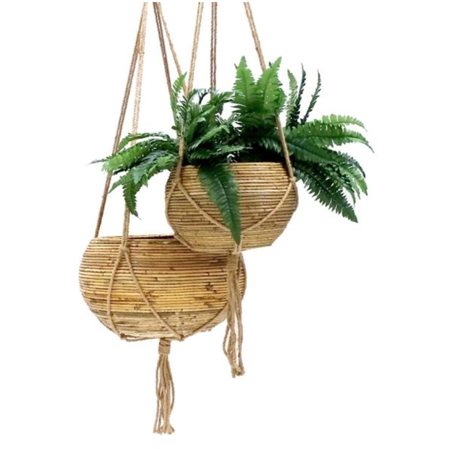 best_pot_plants3