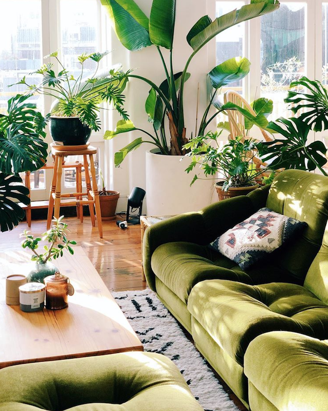 30-Mid-Century-Modern-Inspired-Room-Design-Greenery-4