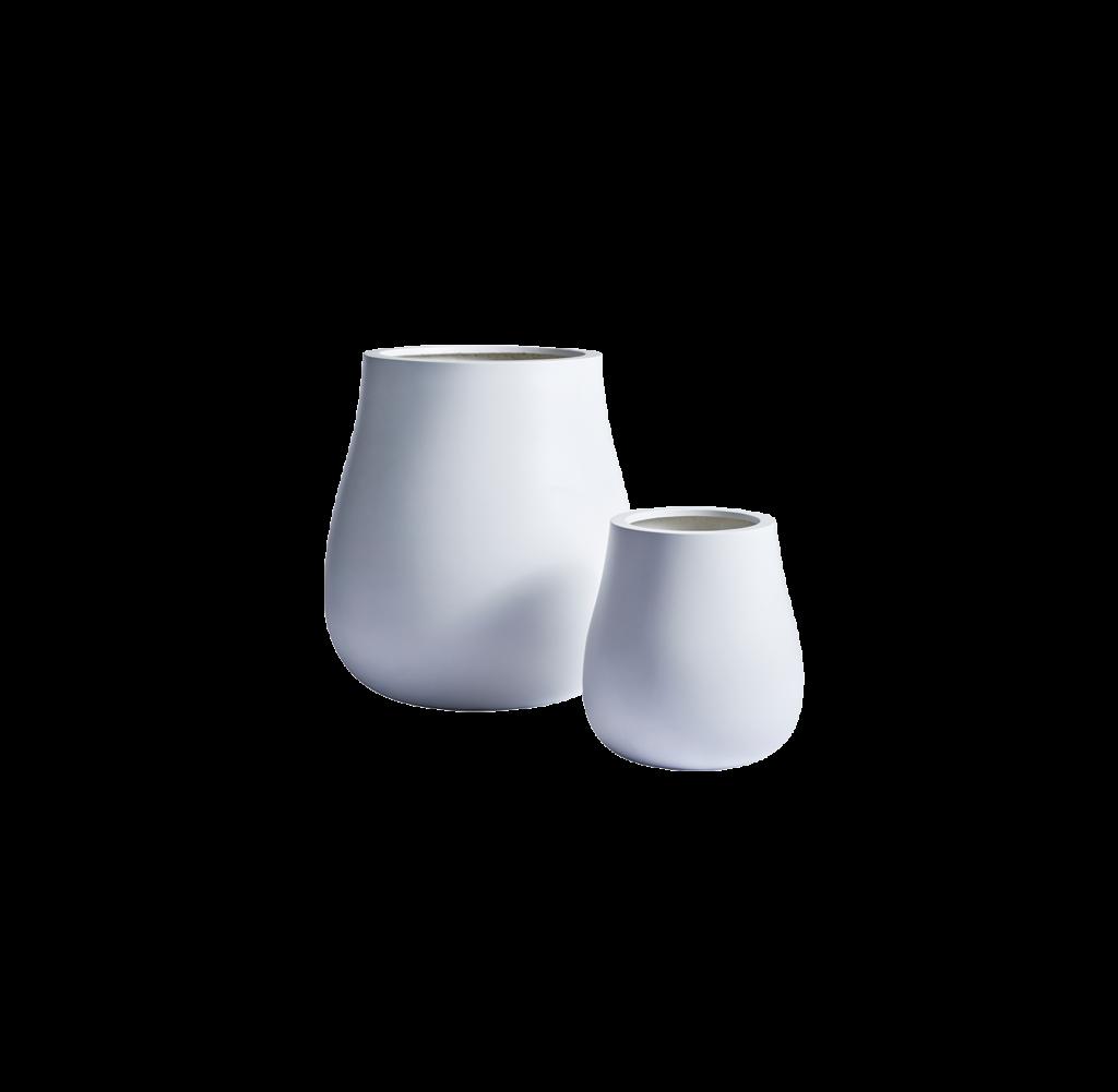 Waddle-White-Group-1-1024x1001